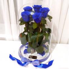 Букет п'ять синіх троянд в колбі Lerosh - Elite 43 см