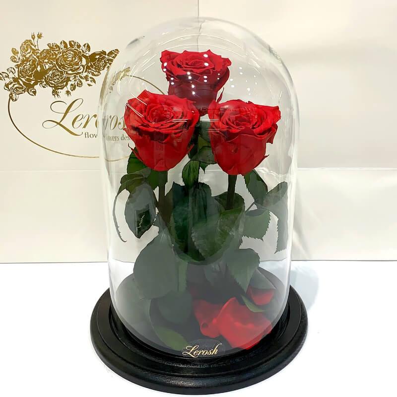 Букет три червоні троянди в колбі Lerosh - Grand 33 см