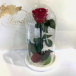 Бордовая роза в колбе Lerosh - Classic 27 см ORIGINAL