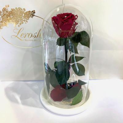 Бордовая роза в колбе Lerosh - Classic 27 см