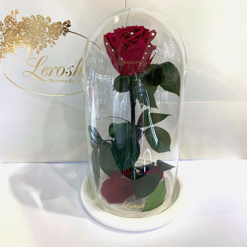 Burgundy rose in flask Lerosh - Classic 27 cm