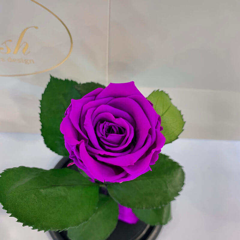 Purple Eternal Rose in Flask Lerosh - Classic 27 cm