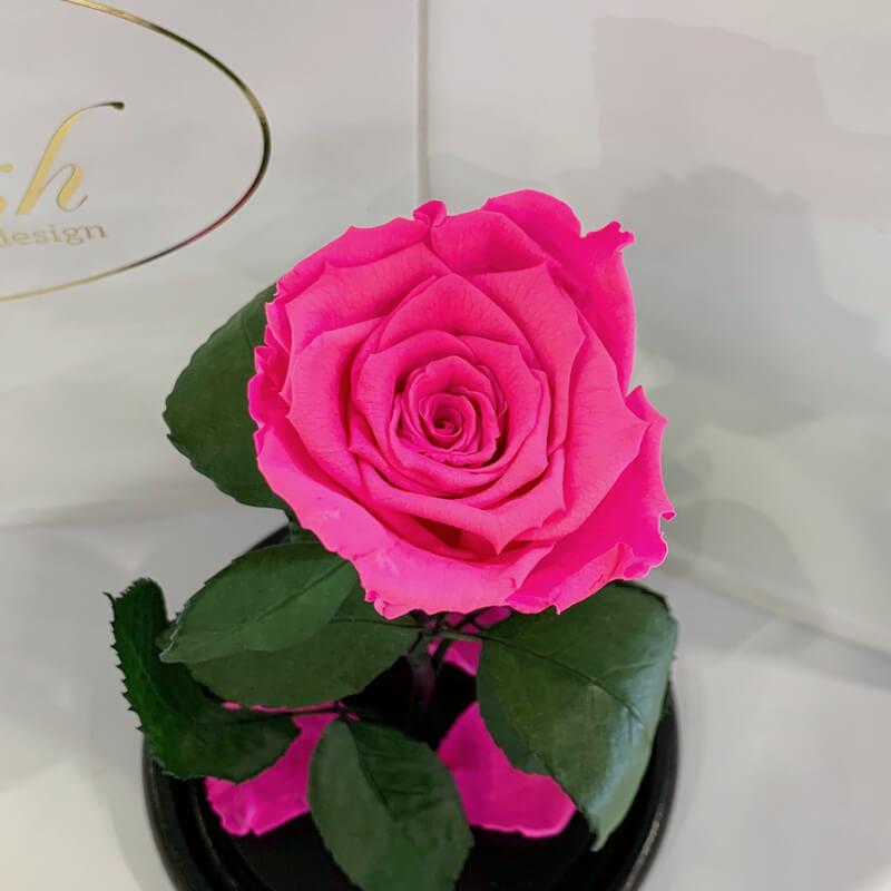 Hot Pink Eternal Rose in Flask Lerosh - Classic 27 cm