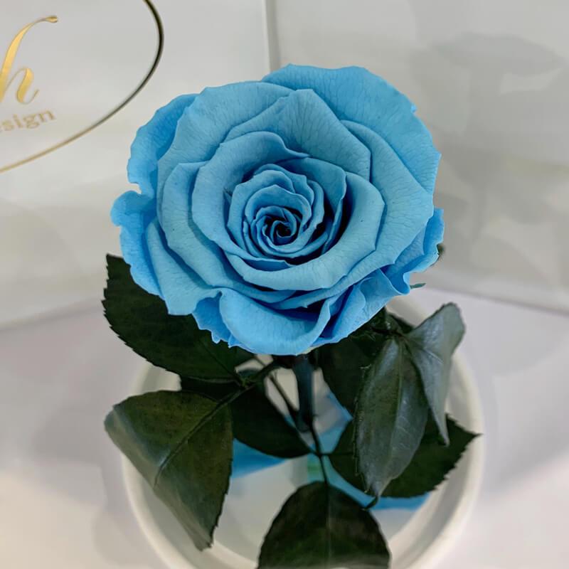 Blue Eternal Rose in Flask Lerosh - Classic 27 cm