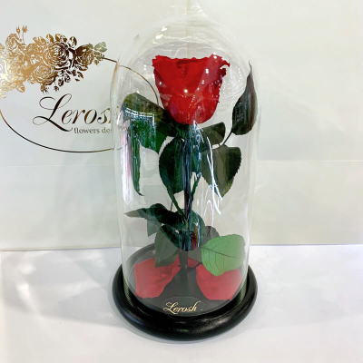 Roses in a Classic flask 27 cm ➖➤ different colors from 1300 UAH