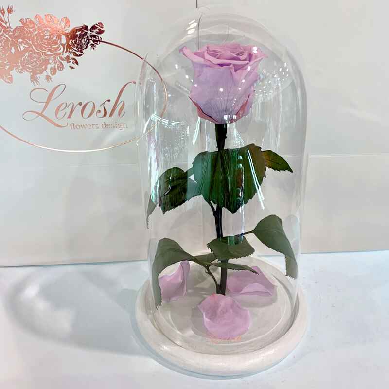 Lilac Eternal Rose in Flask Lerosh - Classic 27 cm