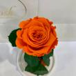 Оранжевая роза в колбе Lerosh - Classic 27 см ORIGINAL