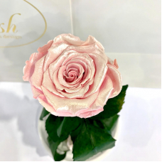 Pink Pearl Eternal Rose in Flask Lerosh - Classic 27 cm