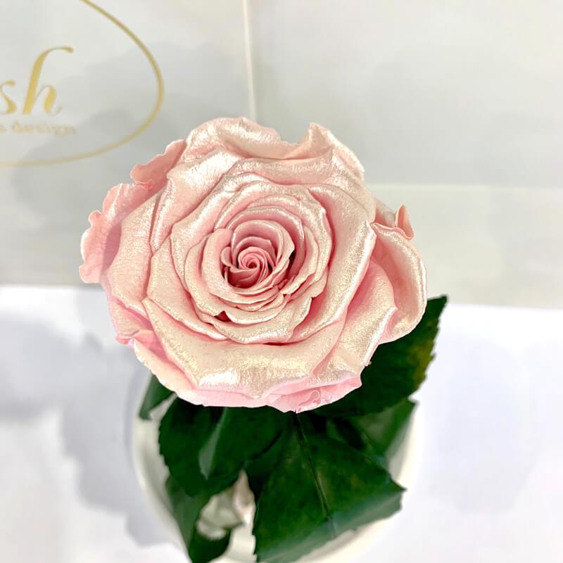 Рожева Перлова троянда в колбі Lerosh - Classic 27 см