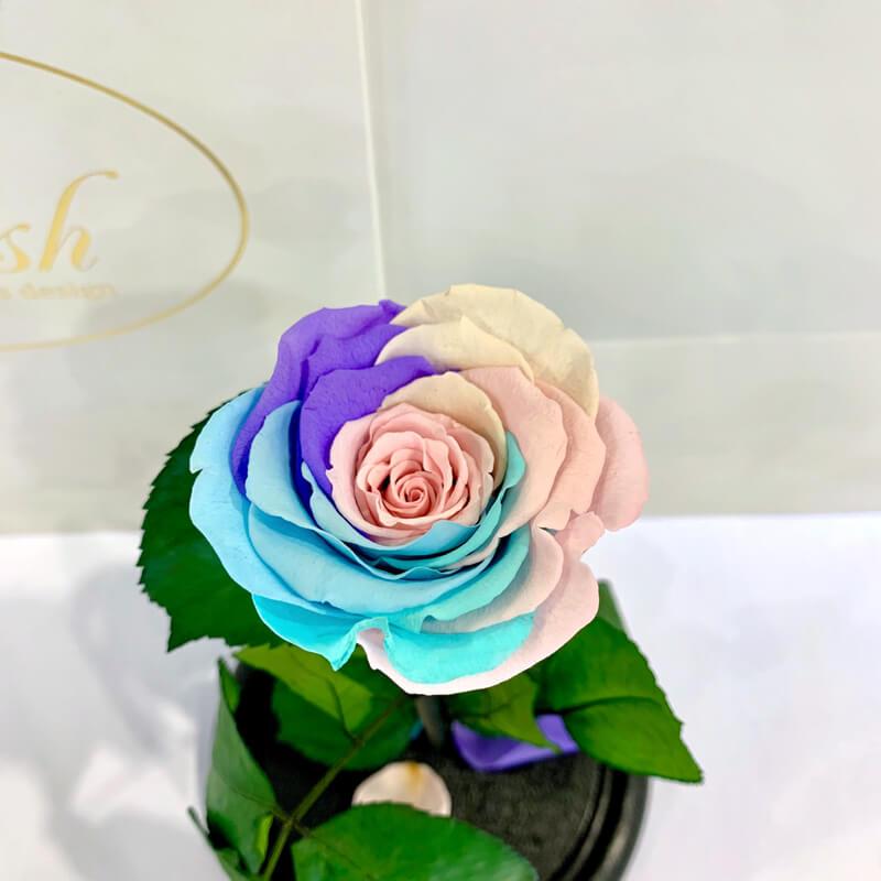 Delicate Rainbow Eternal Rose in Flask Lerosh - Classic 27 cm
