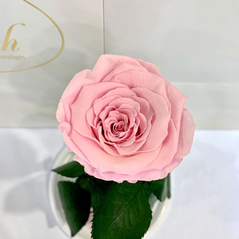 Pink Eternal Rose in Flask Lerosh - Classic 27 cm
