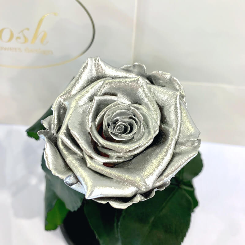 Silver Eternal Rose in Flask Lerosh - Classic 27 cm