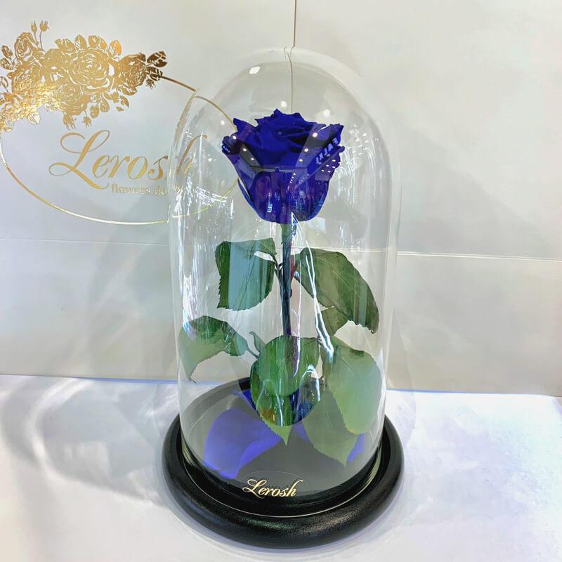 Синя троянда в колбі Lerosh - Classic 27 см
