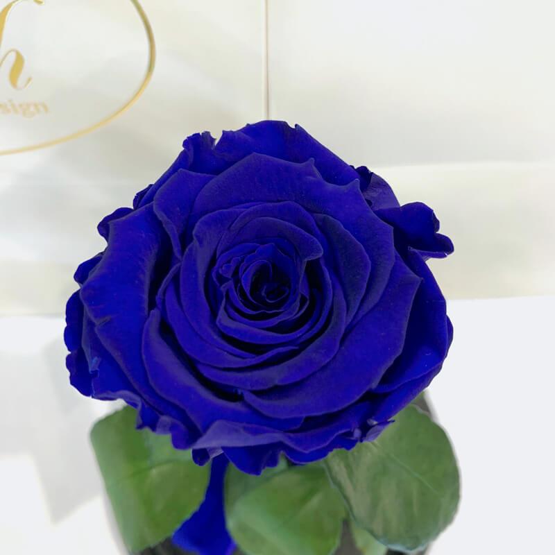 Dark Blue Eternal Rose in Flask Lerosh - Classic 27 cm