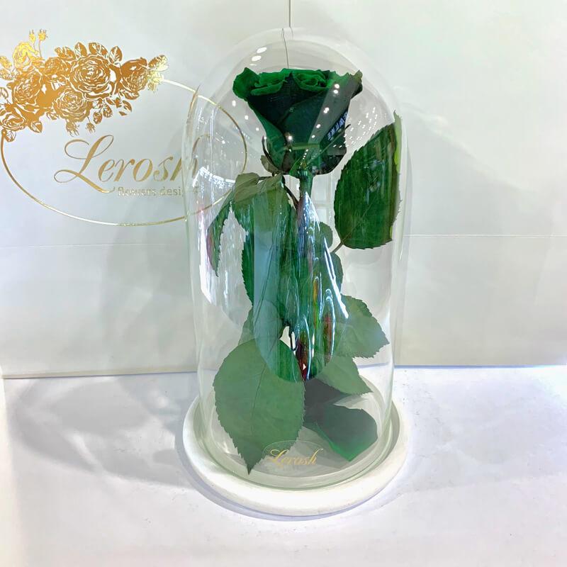 Зелена троянда в колбі Lerosh - Classic 27 см
