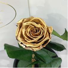 Золота троянда в колбі Lerosh - Classic 27 см