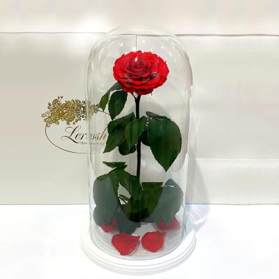 Червона троянда в колбі Lerosh - Elite 45 см на білій підставці
