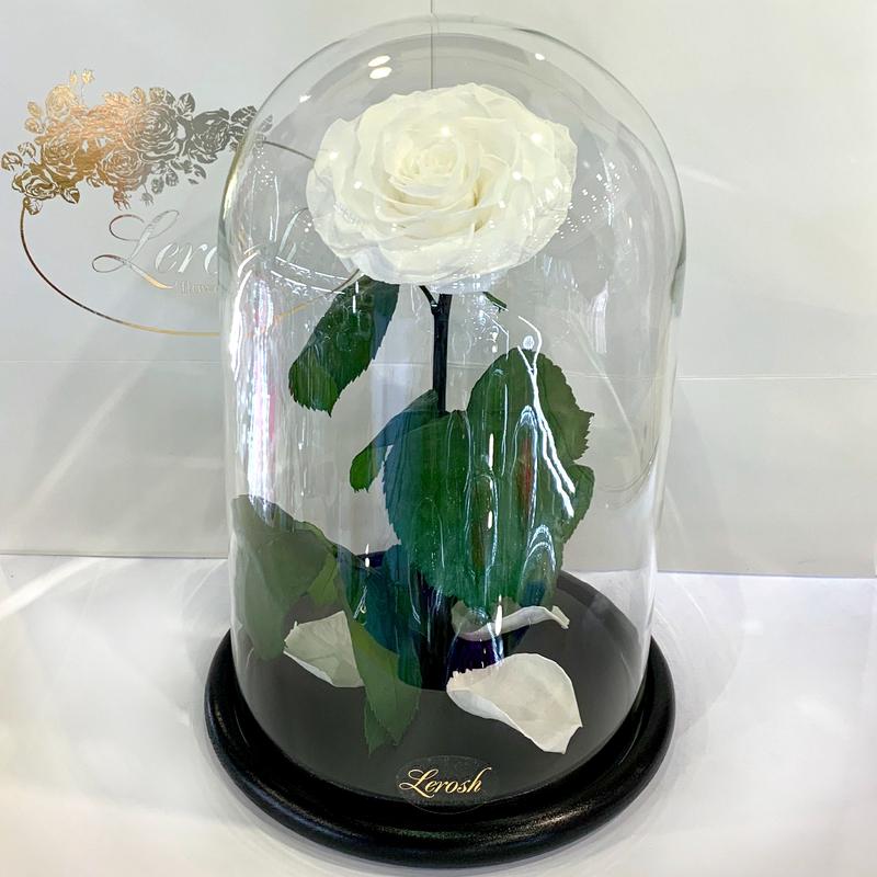 Біла троянда в колбі Lerosh - Lux 33 см