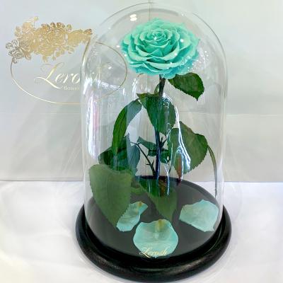 Бирюзовая роза в колбе Lerosh - Lux 33 см