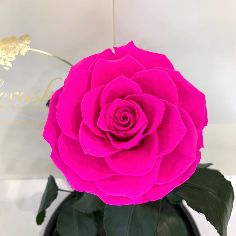 Яскраво-рожева Фуксія троянда в колбі Lerosh - Lux 33 см на білій підставці