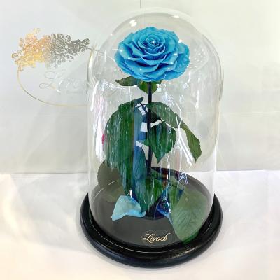 Голубая роза в колбе Lerosh - Lux 33 см