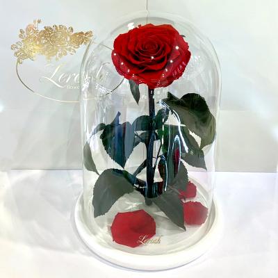 Червона троянда в колбі Lerosh - Lux 33 см  на білій підставці ORIGINAL
