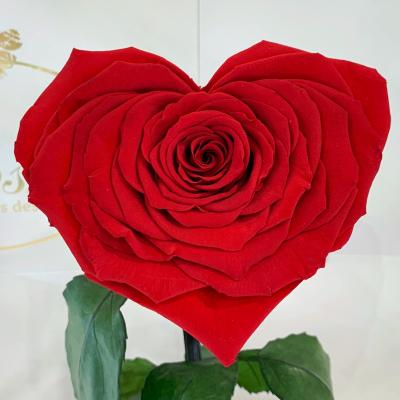 Червона троянда в колбі Серце Lerosh - Lux 33 см ORIGINAL