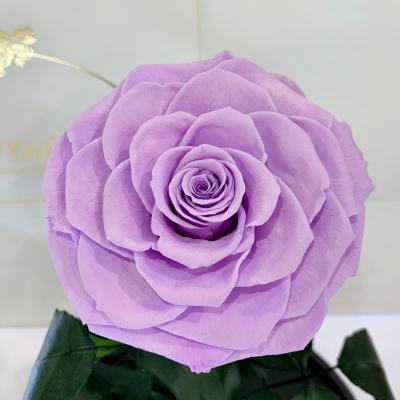 Лілова троянда в колбі Lerosh - Lux 33 см ORIGINAL