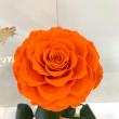 Оранжевая роза в колбе Lerosh - Lux 33 см ORIGINAL