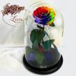 Яркая Радужная роза в колбе Lerosh - Lux 33 см ORIGINAL