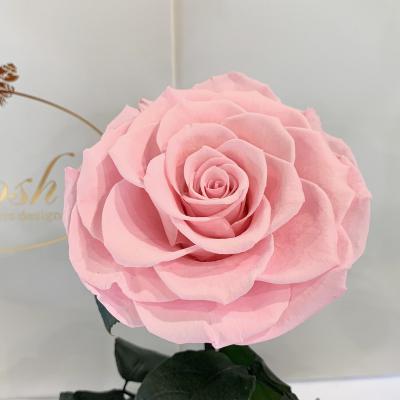 Рожева троянда в колбі Lerosh - Lux 33 см ORIGINAL