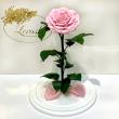 Розовая роза в колбе Lerosh - Lux 33 см на белой подставке ORIGINAL