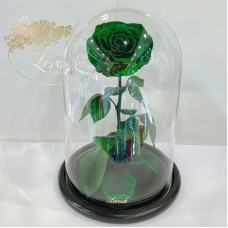 Зелена троянда в колбі Lerosh - Lux 33 см