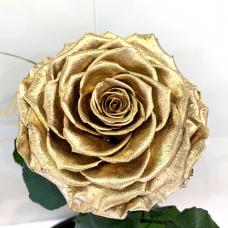 Золота троянда в колбі Lerosh - Lux 33 см