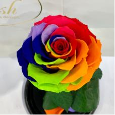 Яскрава Різнокольорова троянда в колбі Lerosh - Premium 27 см
