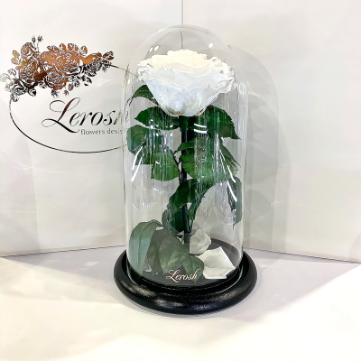 White Eternal Rose in Flask Lerosh - Premium 27 cm