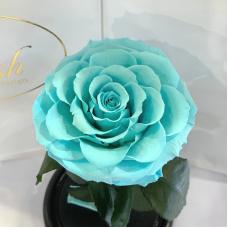 Бірюзова троянда в колбі Lerosh - Premium 27 см