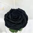 Чорна троянда в колбі Lerosh - Premium 27 см ORIGINAL