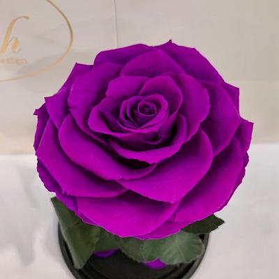 Фіолетова троянда в колбі Lerosh - Premium 27 см ORIGINAL