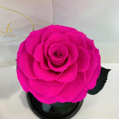 Ярко-розовая Фуксия роза в колбе Lerosh - Premium 27 см