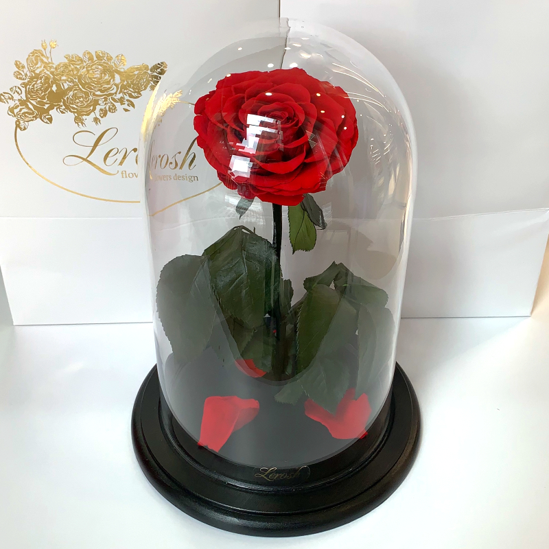 Червона троянда в колбі Lerosh - Premium 27 см - NEW