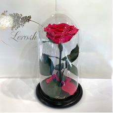 Малинова троянда в колбі Lerosh - Premium 27 см