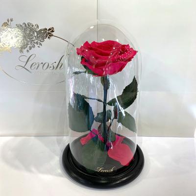 Малинова троянда в колбі Lerosh - Premium 27 см ORIGINAL