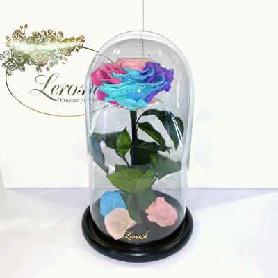 Ніжна Райдужна троянда в колбі Lerosh - Premium 27 см ORIGINAL