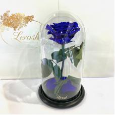 Синя троянда в колбі Lerosh - Premium 27 см