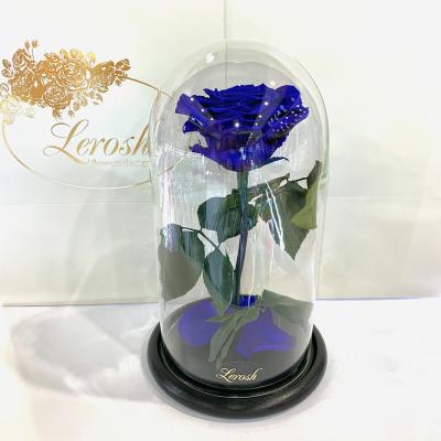 Синяя роза в колбе Lerosh - Premium 27 см