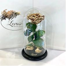 Золота троянда в колбі Lerosh - Premium 27 см