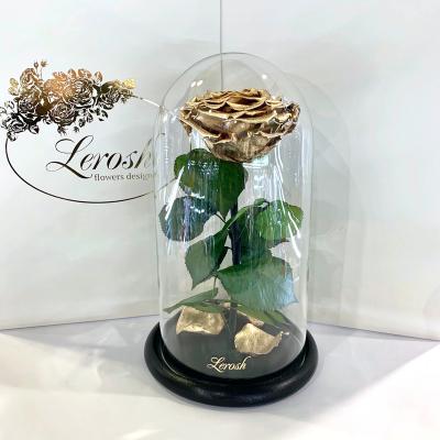 Золотая роза в колбе Lerosh - Premium 27 см