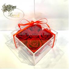 Червоні стабілізовані бутони троянди в подарунковій коробці Lerosh 5 шт - Classic