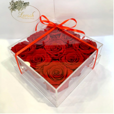 Red Preserved Rosebuds Gift Box 8 Pieces Lerosh - Classic